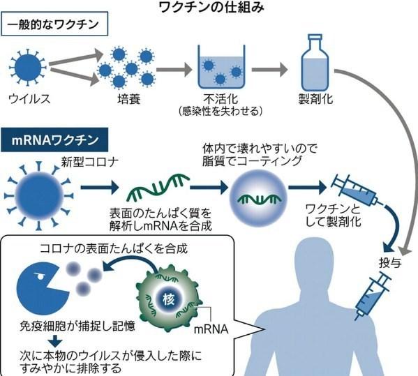 コロナワクチン2.jpg
